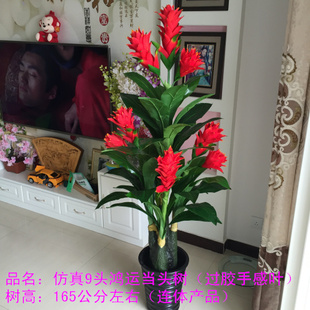 仿真发财树植物大型盆栽盆景假树假花客厅装饰 1.6米平安鸿运当头