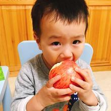 百里小厨 红富士苹果最甜 无农残不打蜡 霜降后 85mm以上