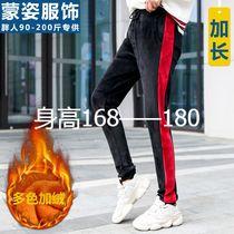 冬金丝绒加长版运动裤女学生红色180高个子女生加绒卫裤休闲棉裤