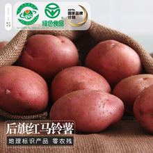 乌兰土宝绿色10斤 中国薯都乌兰察布红皮土豆 后旗红含硒马铃薯