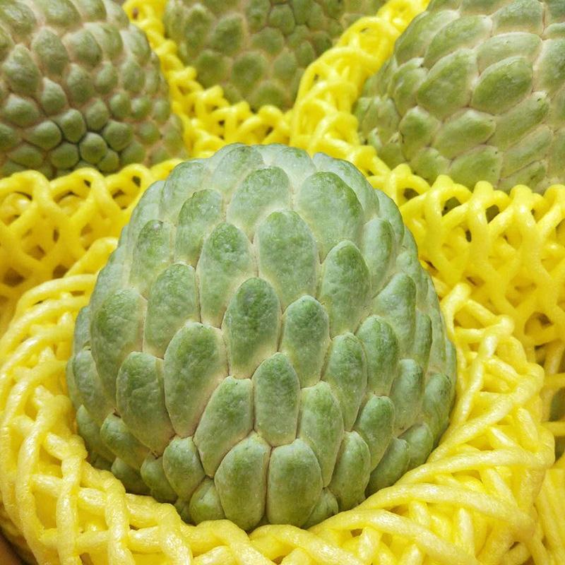 泰国进口释迦果孕妇新鲜水果大目释迦佛头果 番荔枝5斤顺丰包邮