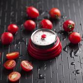 番茄鐘 廚房定時器 學生提醒計時器 德國plazotta廚房機械計時器