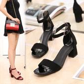 赛百丽夏季一字扣带凉鞋女中跟粗跟百搭韩版学生露趾罗马高跟鞋女