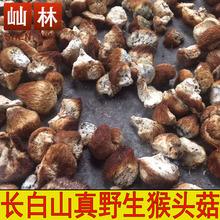 深山野生猴头菇干货山猴头野生 猴头菇 长白山野生猴头菇250克