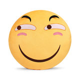 Meiqi anime funny pillow spoof expression two yuan surrounding pillow plush pillow practical graduation gift