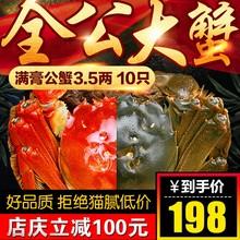 特大10只螃蟹鲜活大闸蟹全公蟹3.5两-膏肥现货礼盒装包顺丰