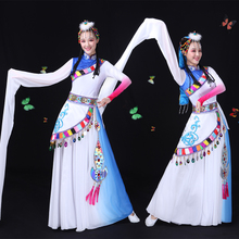 Water-sleeve Tibetan Performance Dresses Women's New Ethnic Minority Dance Dresses Adult Tibetan Long Skirt Square Dance Performance Dresses