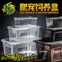 爬虫饲养盒爬宠箱蜘蛛角蛙守宫盒蜥蜴宠物蛇蜗牛活体昆虫乌龟缸
