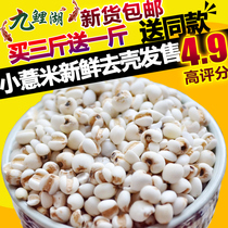 Buy 3 Get 1 fresh Guizhou small barley barley barley kernels barley kernels whole grains whole grains oil 500g