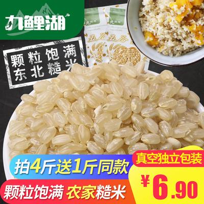 九鲤湖 糙米 买4送1 东北大米胚芽玄米活米粗粮五谷杂粮 500g/袋