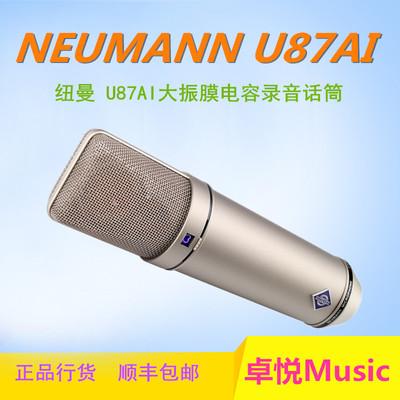 纽曼u87话筒