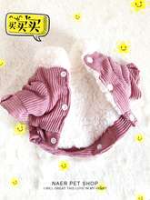 Dog clothes for autumn and winter