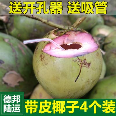新鲜绿皮椰子4个 海南水果黄椰带皮椰子三亚金椰现摘现发椰青包邮