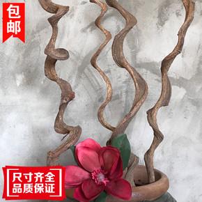 天然干树枝造型过江龙藤干枝插花灵芝藤客厅橱窗装饰花瓶摆件包邮