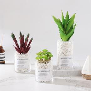 北欧ins仿真植物盆栽摆件假多肉盆景创意家居客厅室内绿植装饰品
