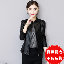 Haining leather jacket in spring and autumn of 2019 new Korean version skinny jacket