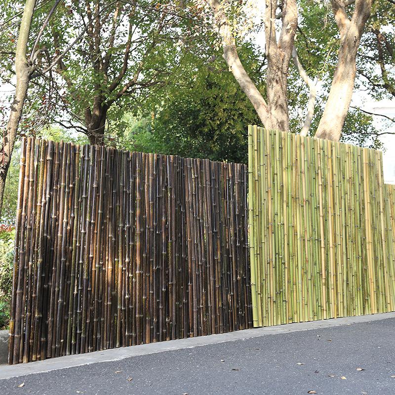 紫竹竹篱笆 竹屏风