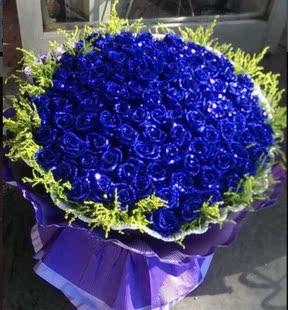 66朵蓝色妖姬玫瑰花茂名鲜花高州化州水东信宜花店同城送鲜花花束