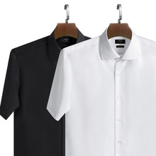 Red Bang Garment Summer Thin Ice Silk Black Modal Short-sleeved Men's Shirts Ironing and Wrinkle-resistant Business Self-cultivation Professional Clothing