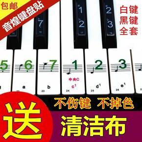 电子琴键盘贴按键贴88键61键54键49透明五线谱简谱贴