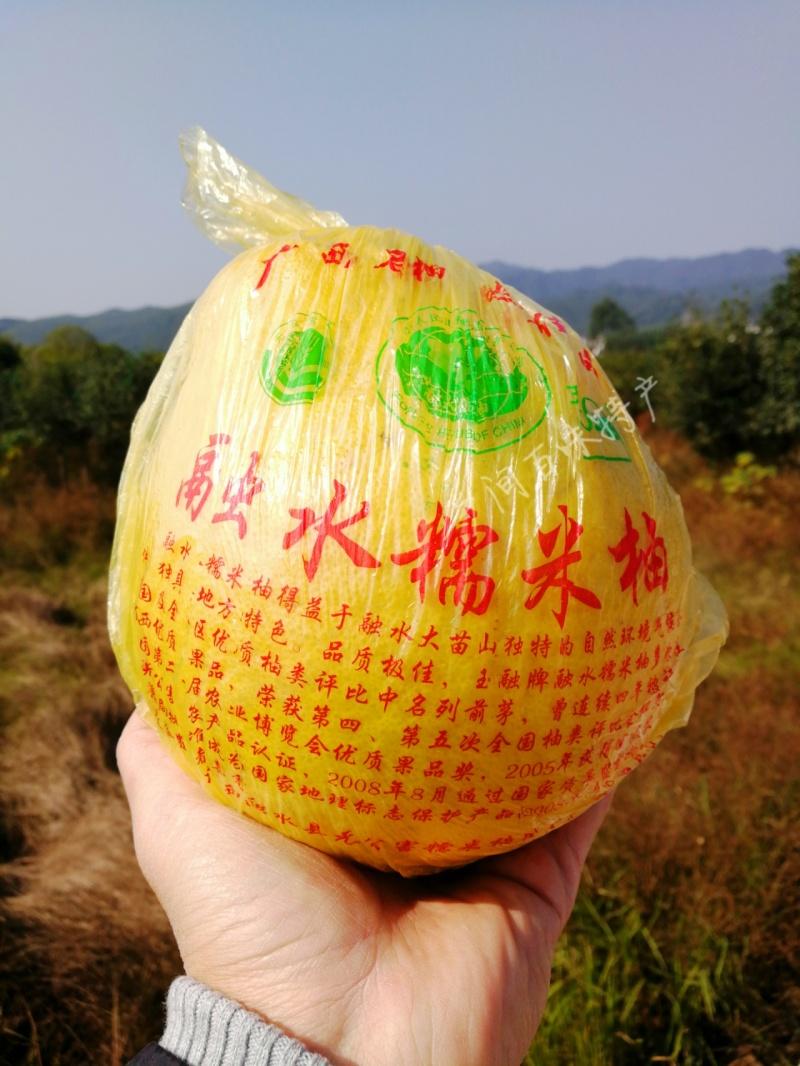 包邮!10个甜柚装24斤大柚 广西融水糯米柚 老树柚 柚子水果 新鲜