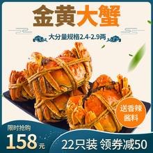 (抢22只)大闸蟹螃蟹鲜活六月黄螃蟹河蟹特大公母蟹礼盒海鲜水产