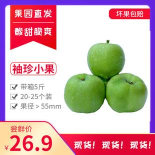 青苹果现货新鲜水果5斤装含箱子山西运城现摘现发20-25个袖珍小果