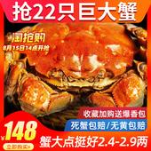 十月印象 22只六月黄大闸蟹鲜活超大螃蟹鲜活香辣蟹薄壳肉蟹 河蟹