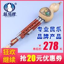 送套装盒个调5共FGB降CD含支套装5红木管葫芦丝乐器