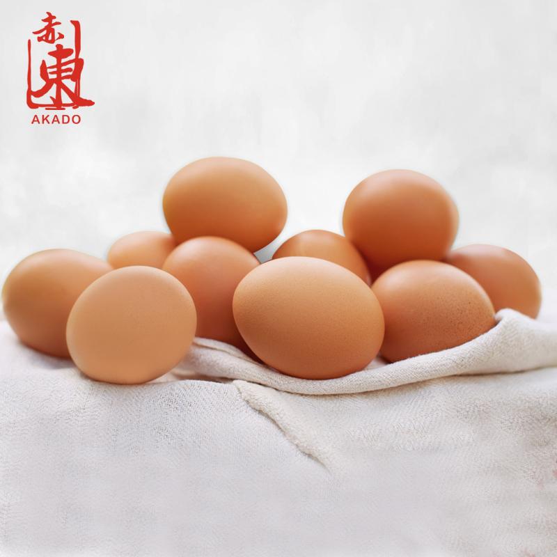 赤东鲜鸡蛋90枚 日料餐饮专用蛋 业务装 溏心蛋温泉蛋制作专用蛋