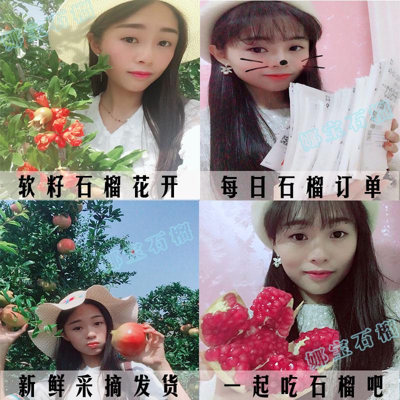 (收藏店铺今年8月见!)荥阳河阴突尼斯软籽石榴 已售罄!
