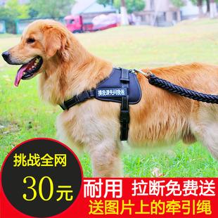 狗绳狗链子中型大型犬胸背带式金毛拉布拉多宠物背心送牵引绳包邮