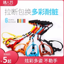 Puppy leash dog chain Teddy cat small and medium-sized dog puppy walking dog rope with pet supplies collar