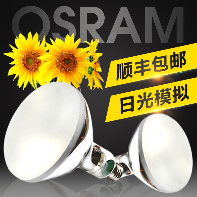 模拟太阳光热带植物灯 VITALUX ULTRA 老化灯 300W 欧司朗紫外线灯泡