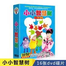 2-5岁小小智慧树dvd启蒙幼儿童动画片舞蹈儿歌舞早教光盘碟片高清