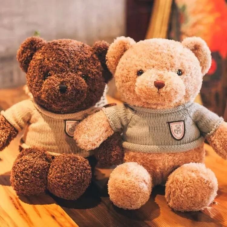 小熊抱小熊布娃娃