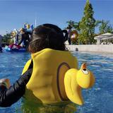 Korean version of the children's swimming vest swimwear baby life jacket cute buoyancy vest than the swim ring