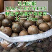 包邮 干果花新鲜罗汉果茶 60个野生罗汉果广西桂林永福特产凉茶散装