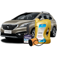 Dongfeng Peugeot 3008 2.0/1.6T Car Care Service Oil + Machine Filter (without working hours) b025