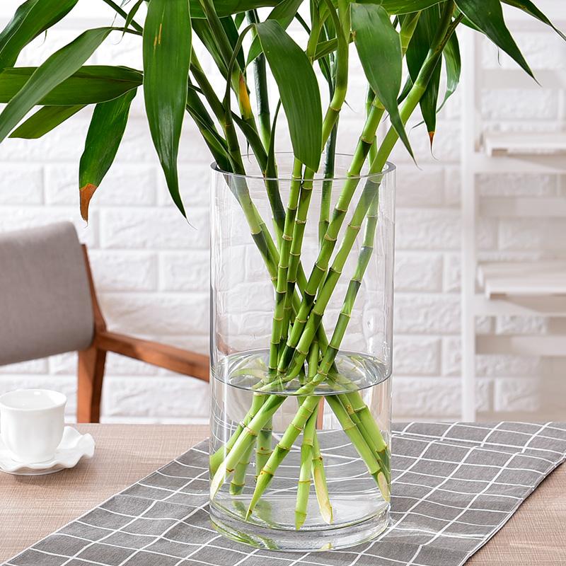 現代簡歐特大號富貴竹花瓶擺件玻璃插花透明客廳落地家居創意擺設