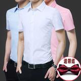 结婚礼服衬衣服新郎衬衫男短袖粉色白伴郎服夏季兄弟装团网红潮流
