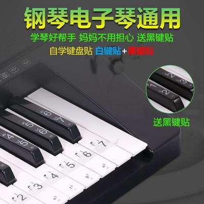 包邮送黑键贴88键 61键透明五线谱简谱琴键贴纸钢琴 电子琴键盘贴网店网址