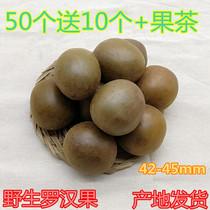 广西桂林永福特产特级野生罗汉果小罗汉果50个送10个散装干果茶