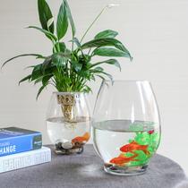 透明玻璃容器简约现代花瓶客厅创意水培桌面摆件饰品绿萝植物