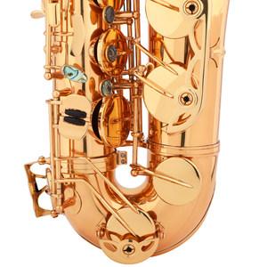 圣迪次中音萨克斯乐器正品成人降b调萨克斯风管乐队专业演奏考级