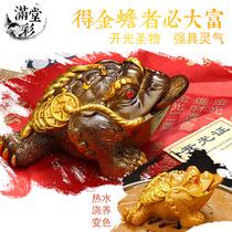 创意招财茶宠小猪茶艺摆件精品可养紫砂茶玩茶具配件生肖猪装饰品