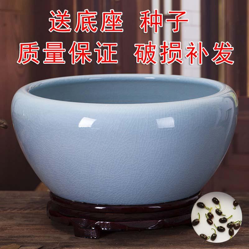 瓷盆鱼缸大号