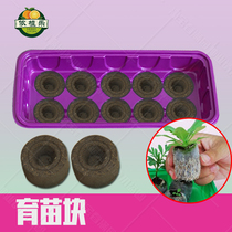 Cultivation of seed seedling box compressed seedling block free shipping moisturizing Nutrition matrix Compressed peat Block Acupoint plate