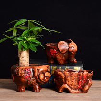 Small size Fortune Tree special money pig red Pottery meat plant multi-meat creative flowerpot personality Ceramics Simple Retro