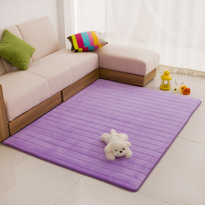特卖加厚记忆绒面卧室满铺地毯床边防水长方形可定做可机洗不掉毛